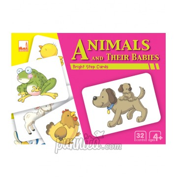 PELANGI Bright step cards - Animals & Their